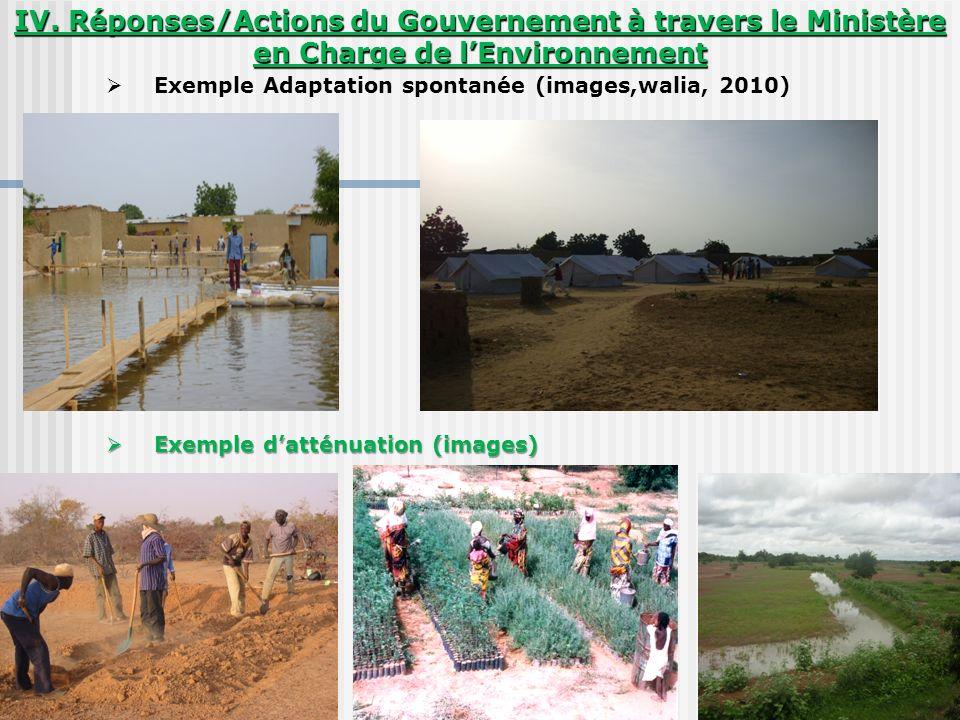 IV. Réponses/Actions du Gouvernement à travers le Ministère en Charge de l'Environnement