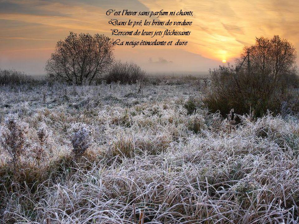 C'est l'hiver sans parfum ni chants, Dans le pré, les brins de verdure