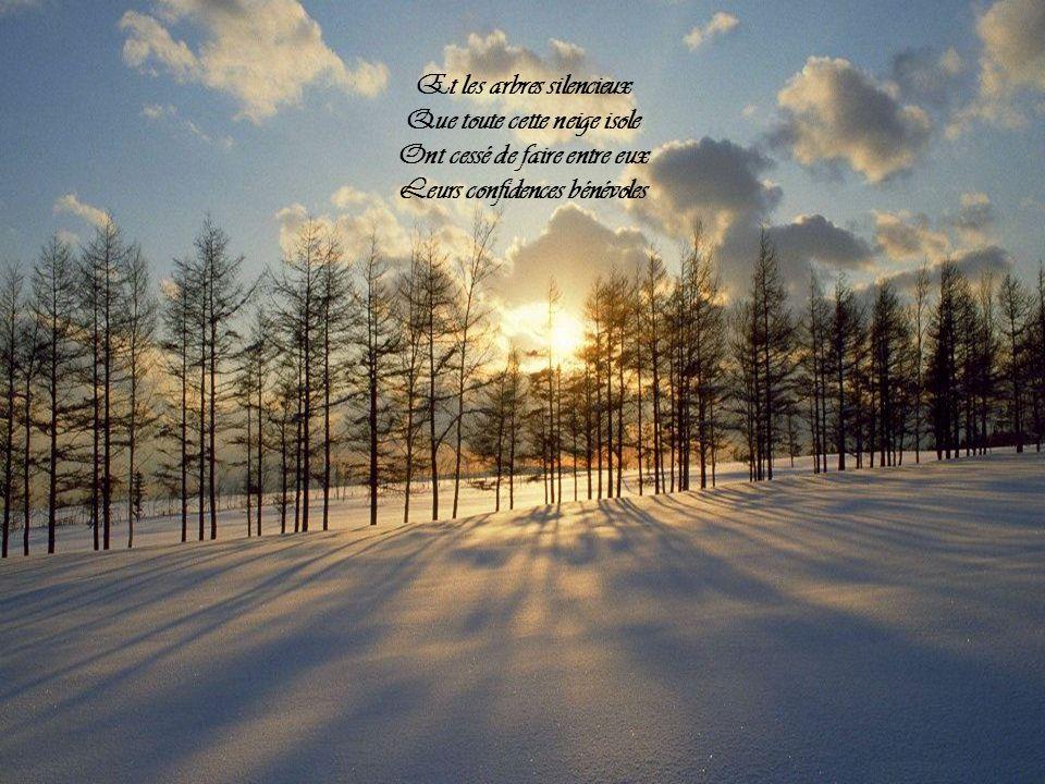 Et les arbres silencieux Que toute cette neige isole