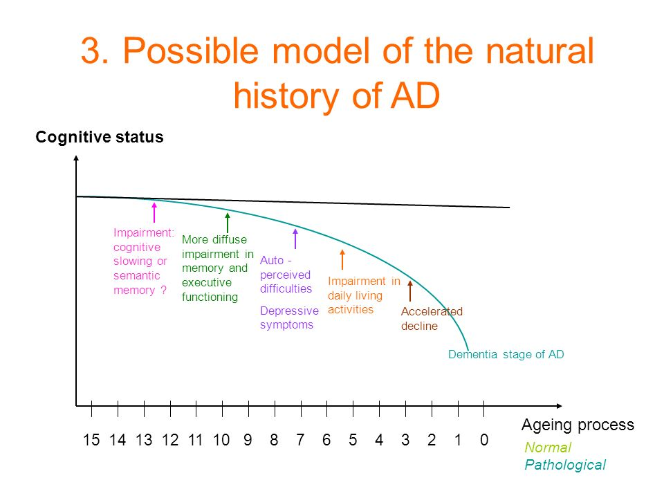 3. Possible model of the natural history of AD