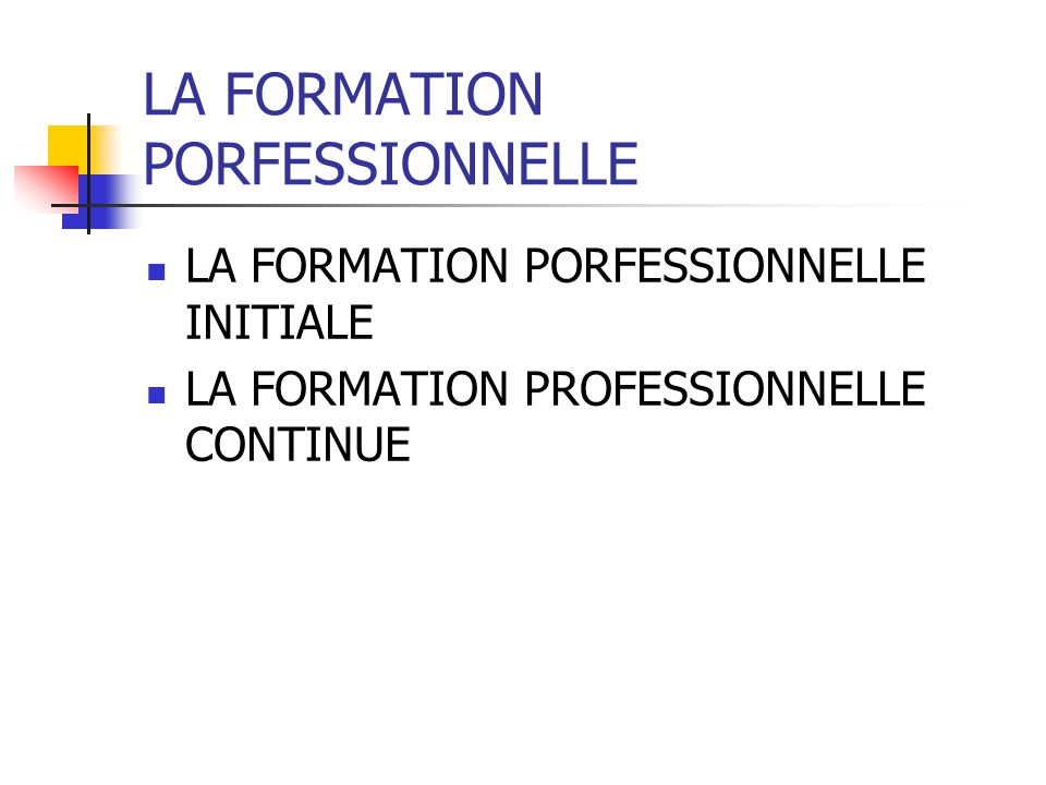 LA FORMATION PORFESSIONNELLE
