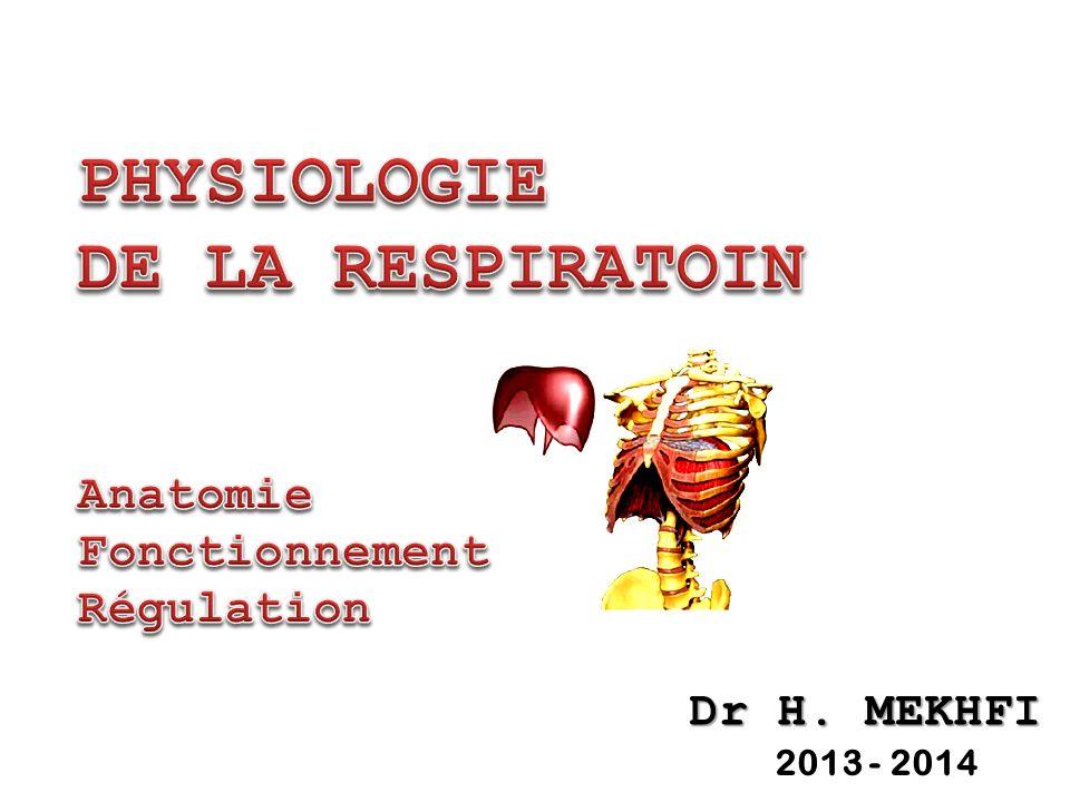 PHYSIOLOGIE DE LA RESPIRATOIN Anatomie Fonctionnement Régulation