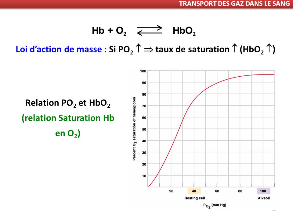 Relation PO2 et HbO2 (relation Saturation Hb en O2)