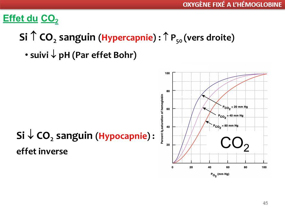 CO2 Si  CO2 sanguin (Hypercapnie) :  P50 (vers droite)