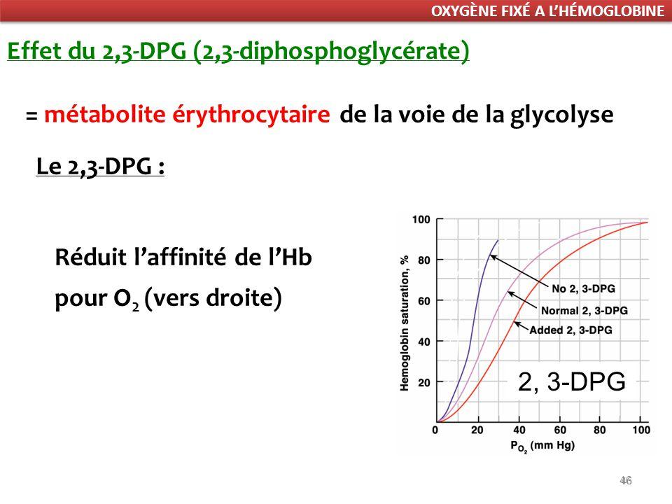 Effet du 2,3-DPG (2,3-diphosphoglycérate)