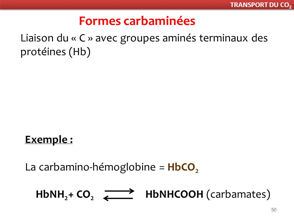 HbNH2+ CO2 HbNHCOOH (carbamates)