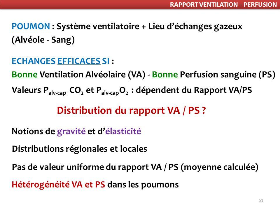 Distribution du rapport VA / PS