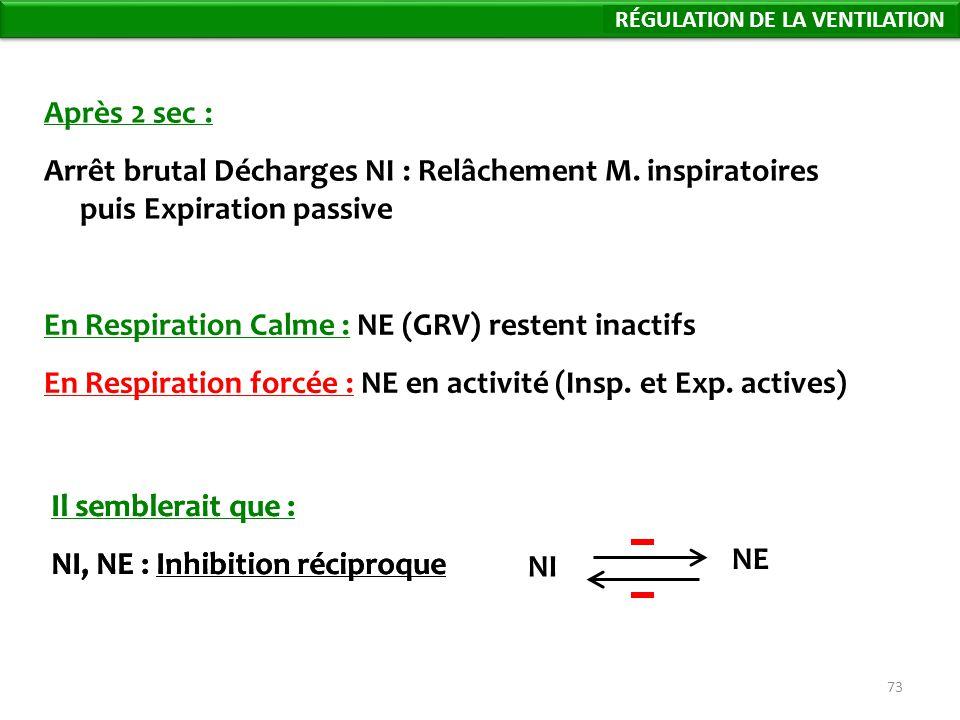 En Respiration Calme : NE (GRV) restent inactifs