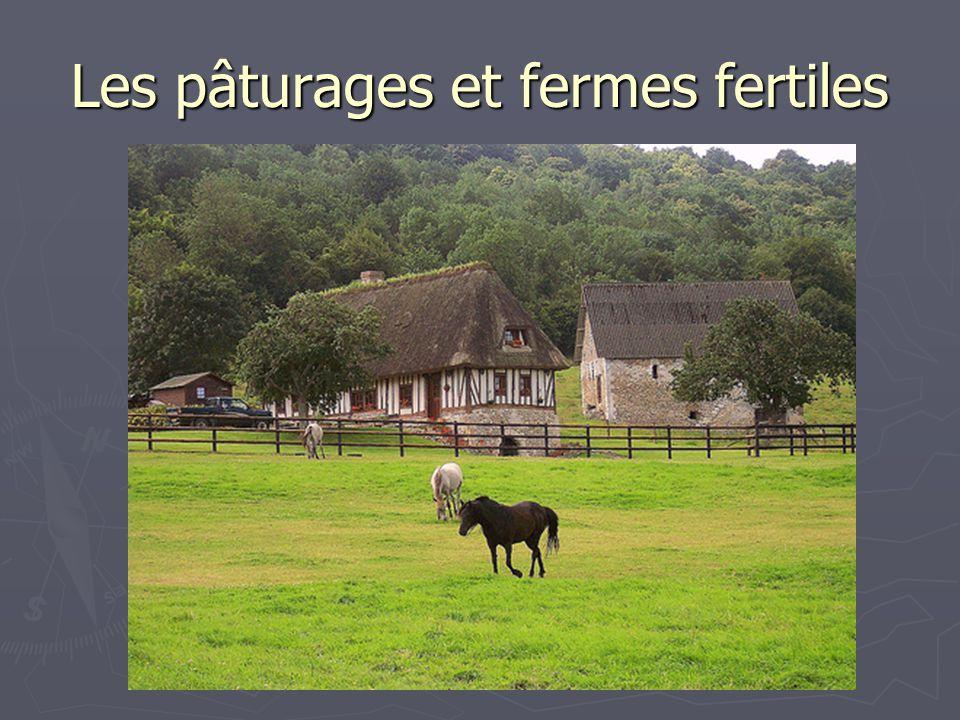 Les pâturages et fermes fertiles