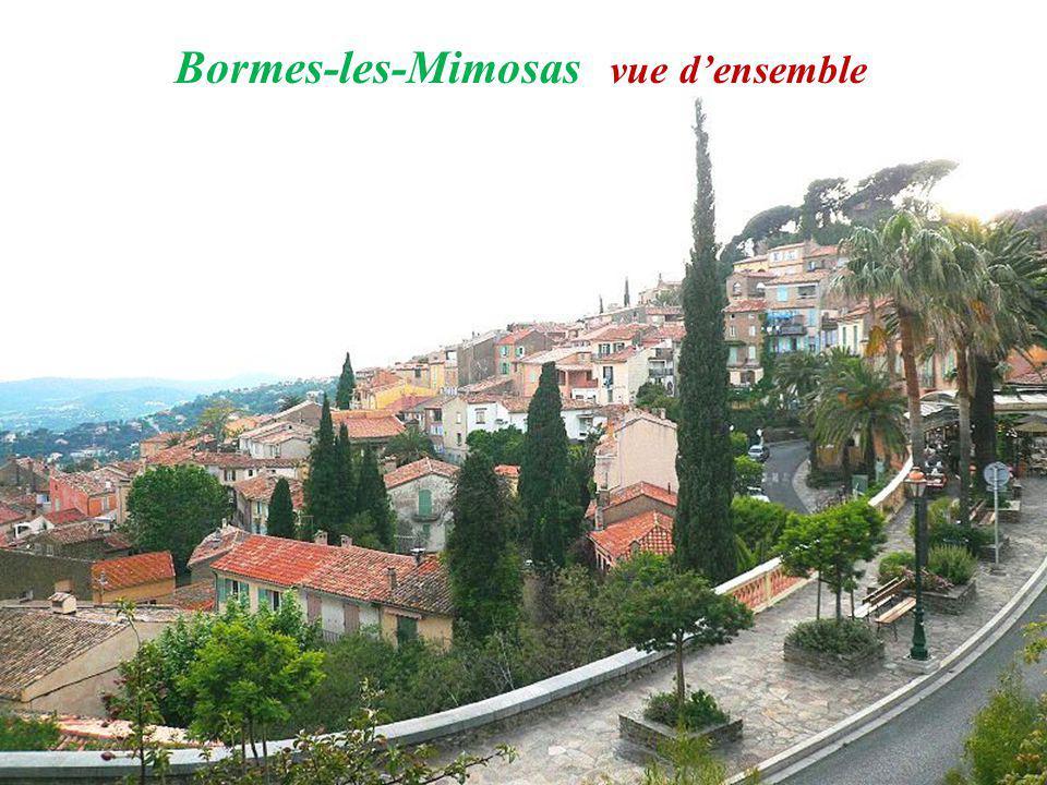 Bormes-les-Mimosas vue d'ensemble