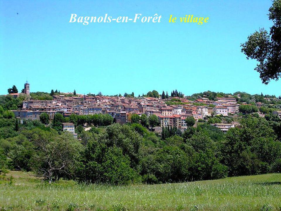 Bagnols-en-Forêt le village