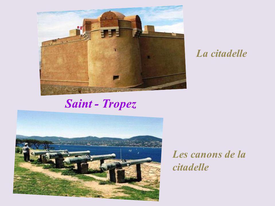 La citadelle Saint - Tropez Les canons de la citadelle