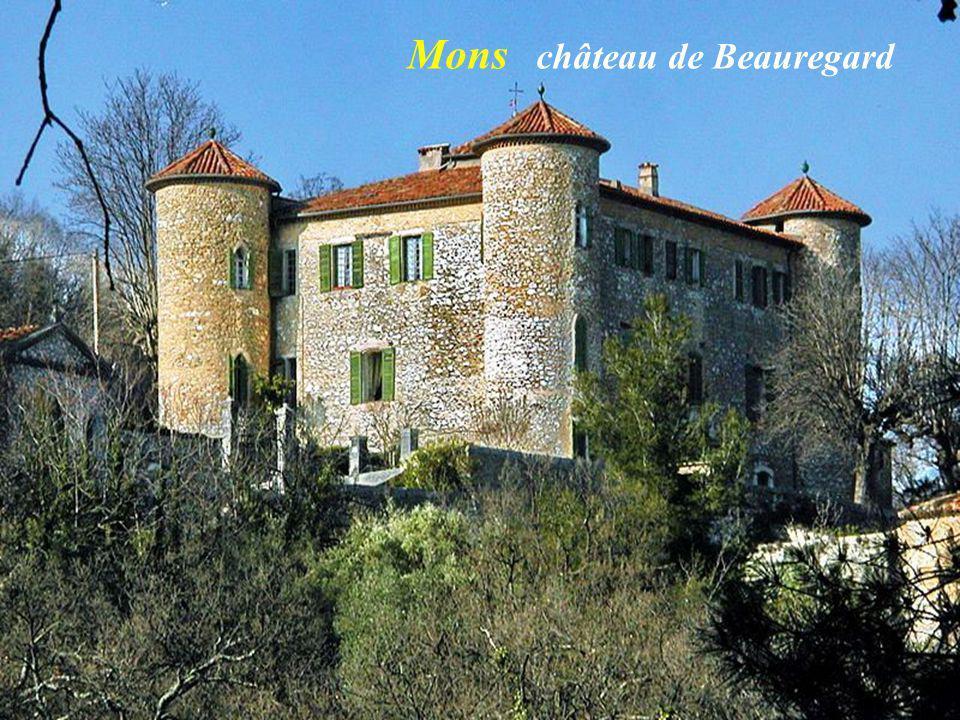 Mons château de Beauregard