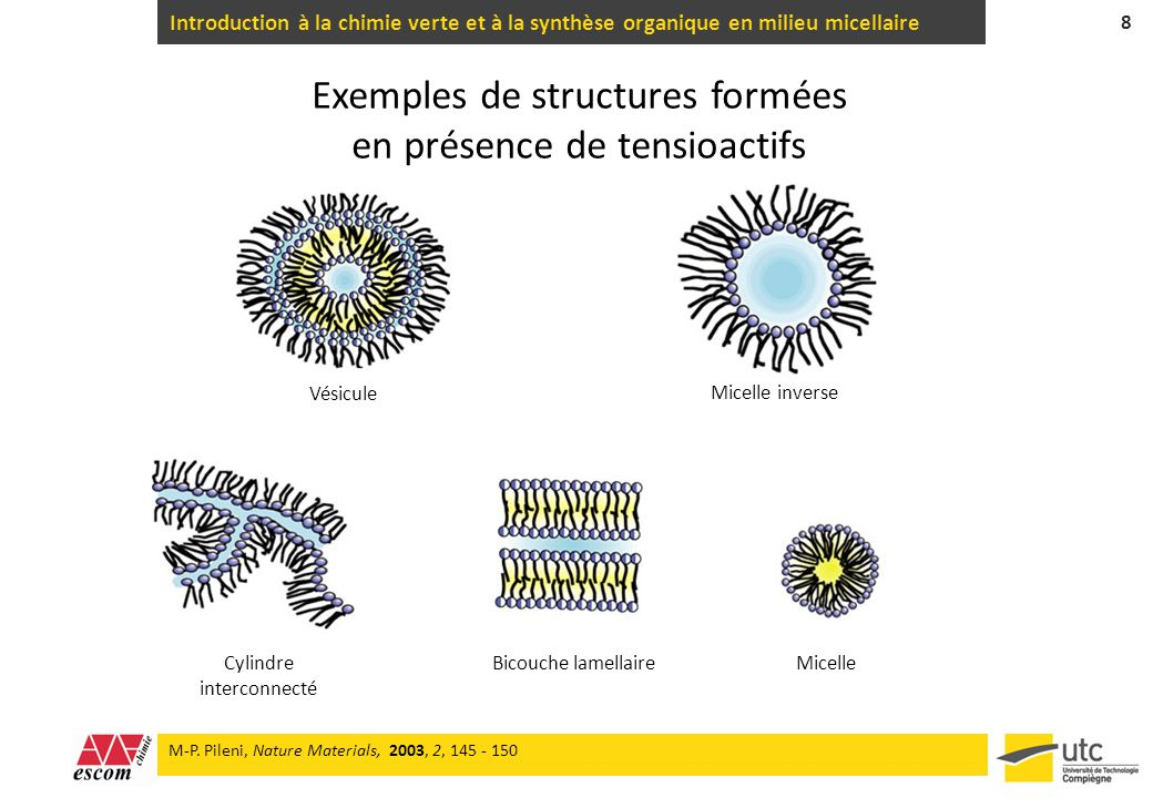 Exemples de structures formées en présence de tensioactifs