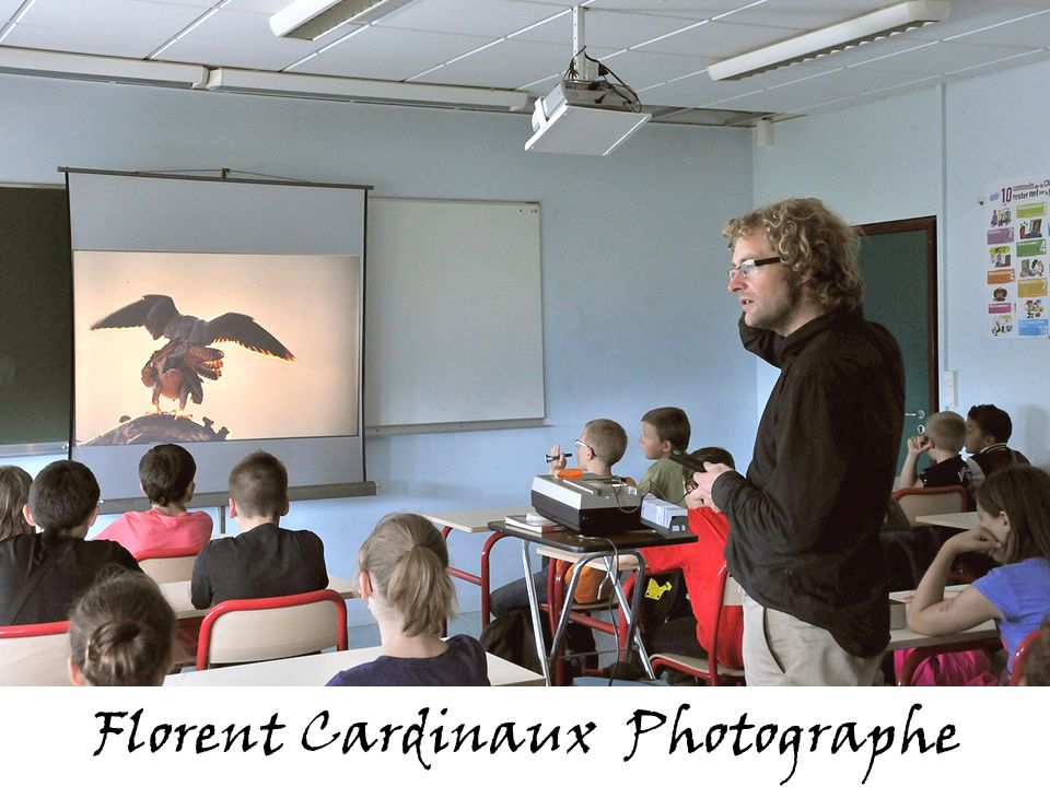 Florent Cardinaux Photographe