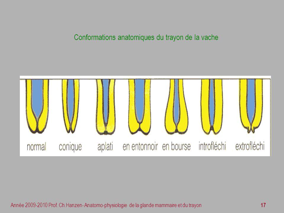 Conformations anatomiques du trayon de la vache