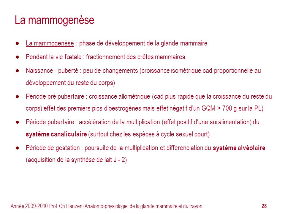 La mammogenèse La mammogenèse : phase de développement de la glande mammaire. Pendant la vie fœtale : fractionnement des crêtes mammaires.