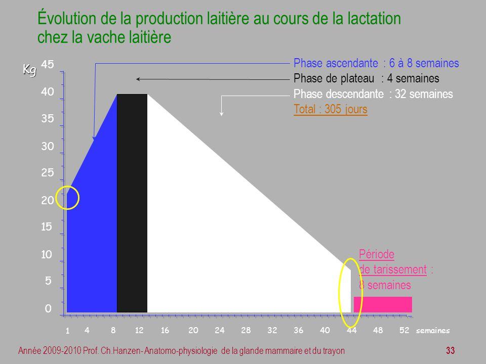 Évolution de la production laitière au cours de la lactation chez la vache laitière