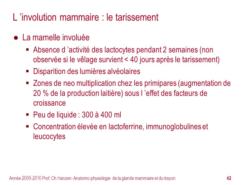 L 'involution mammaire : le tarissement