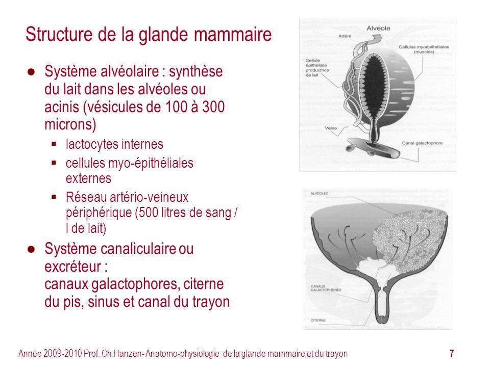 Structure de la glande mammaire