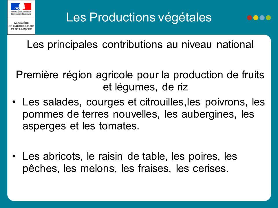 Les Productions végétales