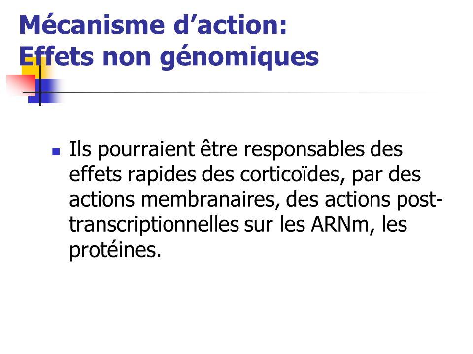 Mécanisme d'action: Effets non génomiques