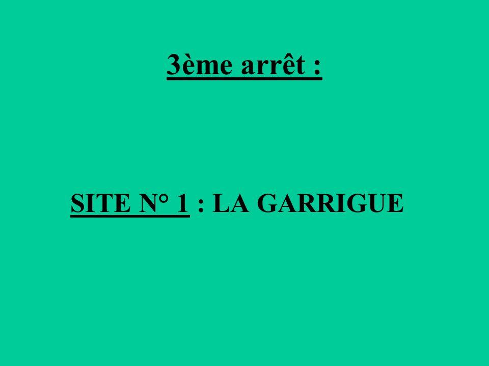 3ème arrêt : SITE N° 1 : LA GARRIGUE