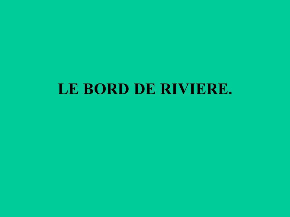 LE BORD DE RIVIERE.