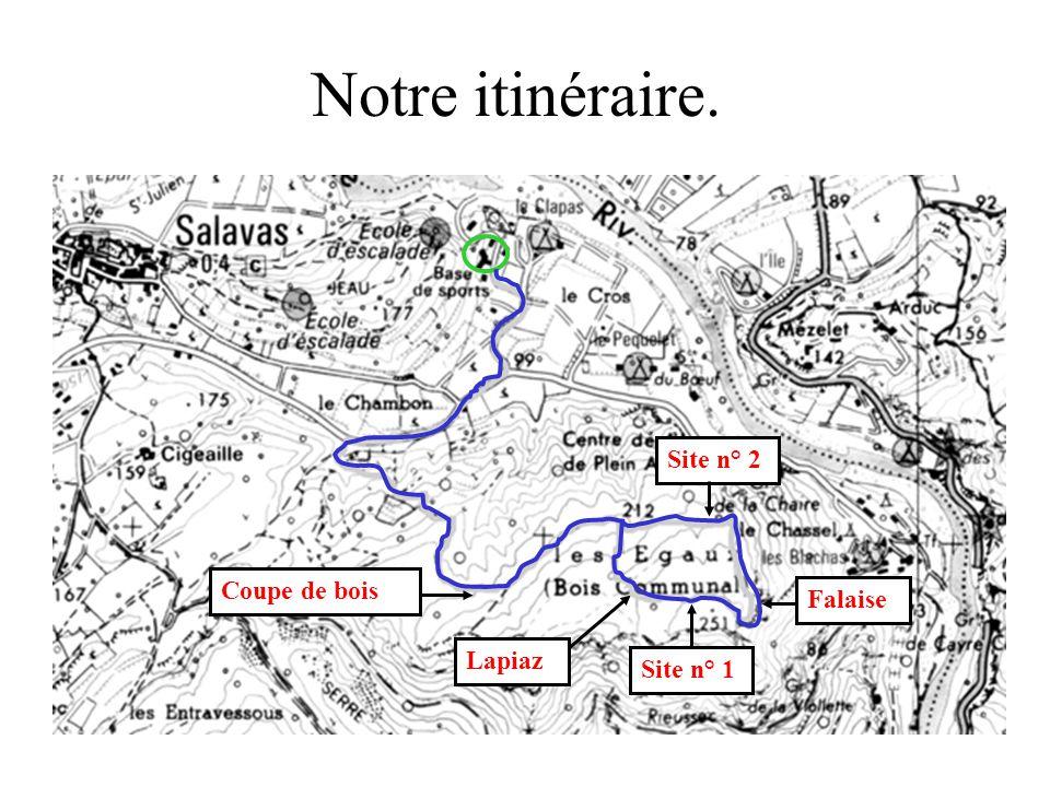 Notre itinéraire. Site n° 2 Coupe de bois Falaise Lapiaz Site n° 1