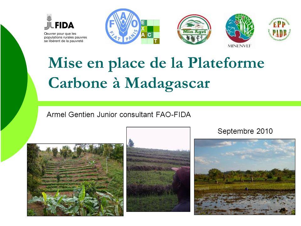 Mise en place de la Plateforme Carbone à Madagascar