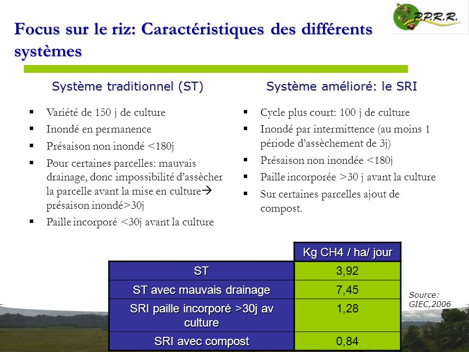Focus sur le riz: Caractéristiques des différents systèmes