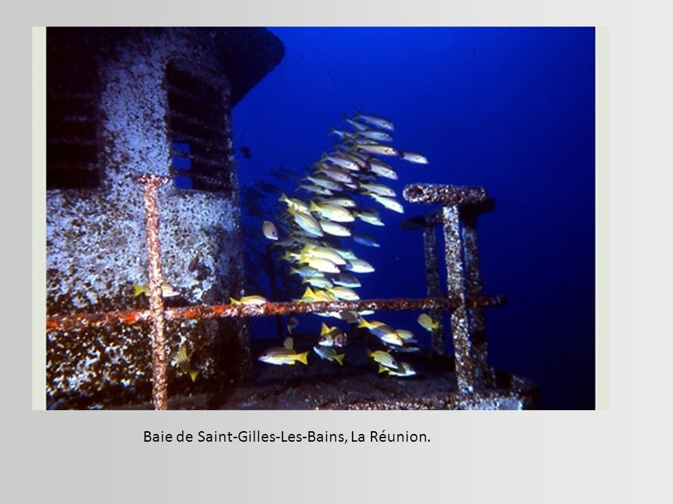 Baie de Saint-Gilles-Les-Bains, La Réunion.