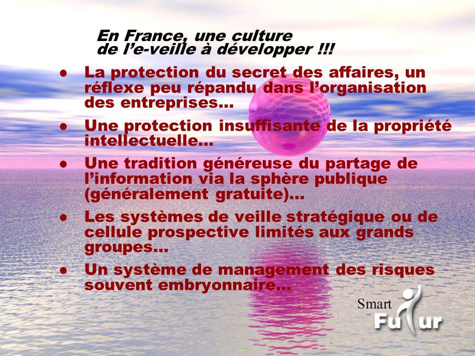 En France, une culture de l'e-veille à développer !!!