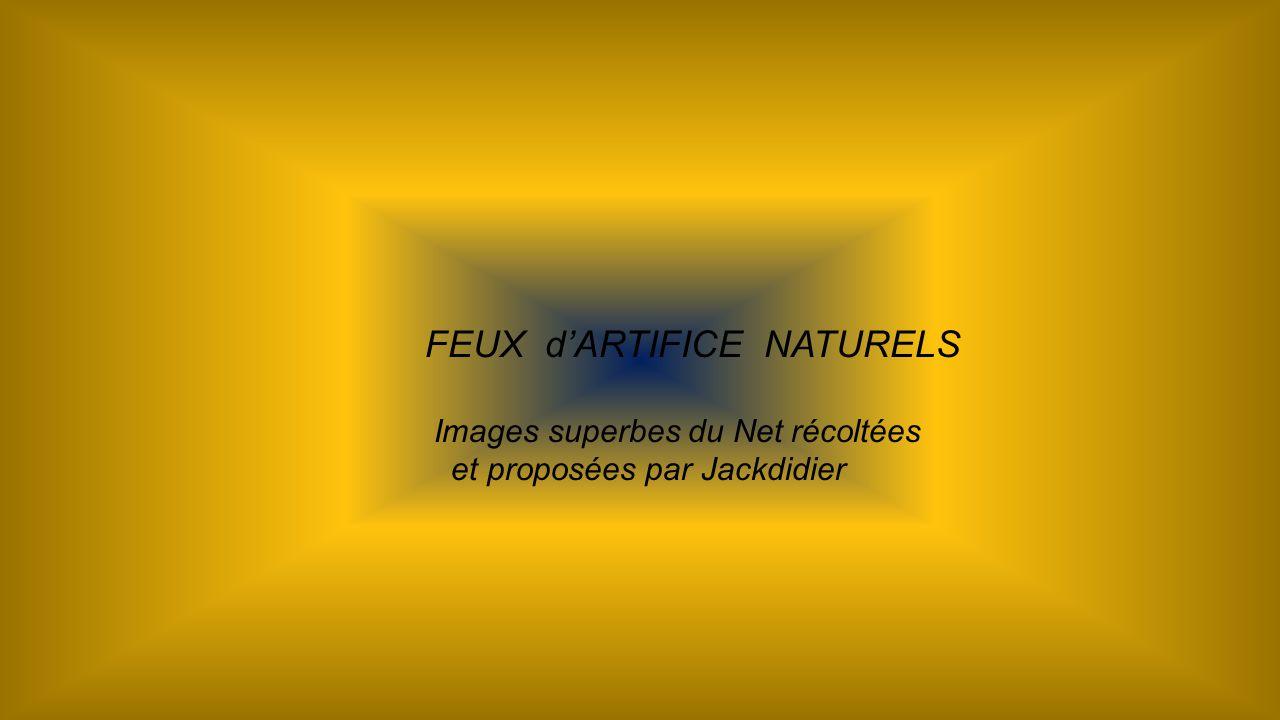 FEUX d'ARTIFICE NATURELS
