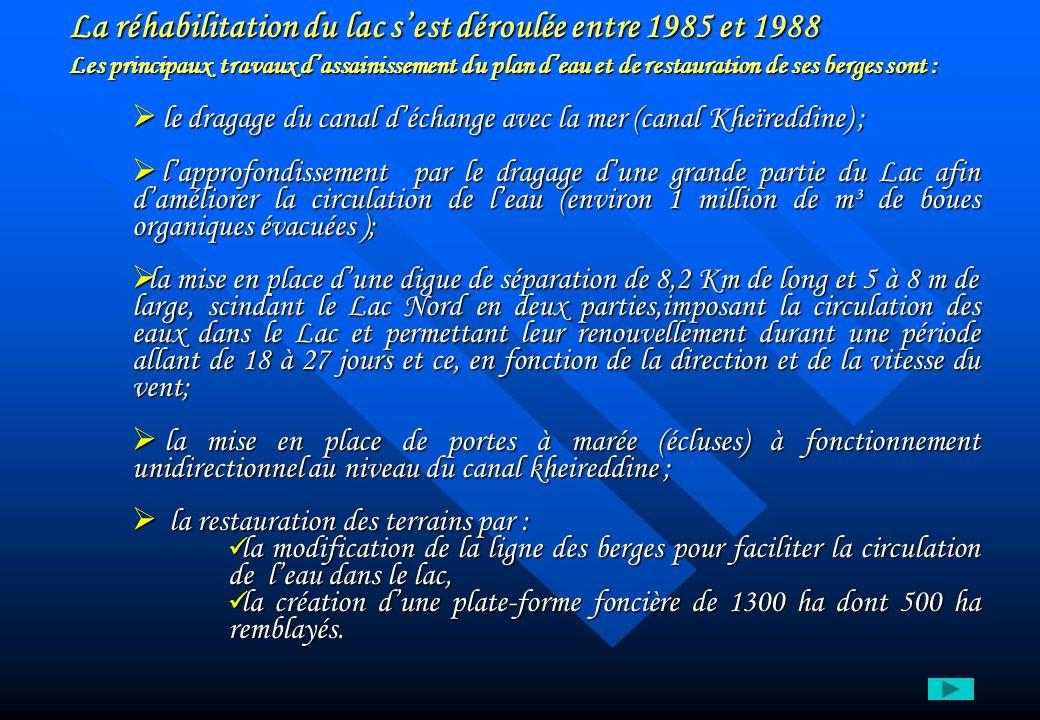 La réhabilitation du lac s'est déroulée entre 1985 et 1988