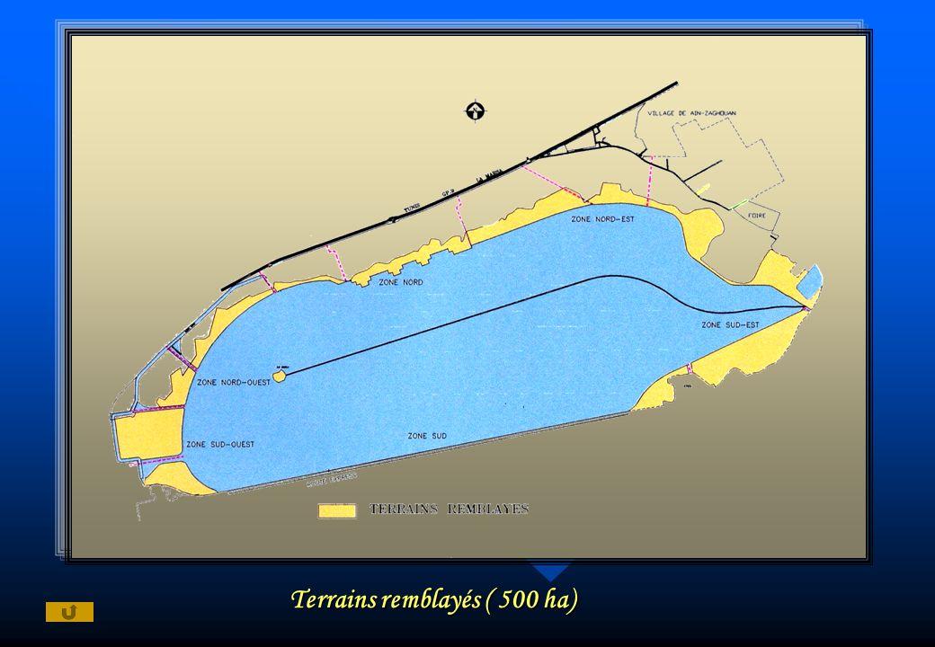 Terrains remblayés ( 500 ha)