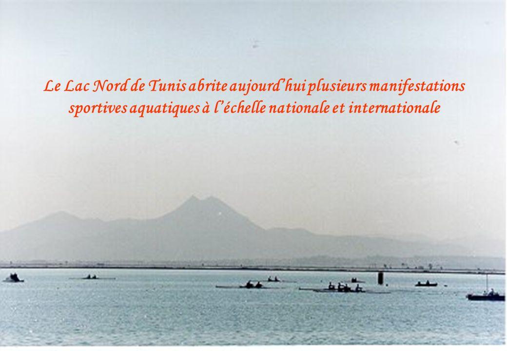 Le Lac Nord de Tunis abrite aujourd'hui plusieurs manifestations sportives aquatiques à l'échelle nationale et internationale
