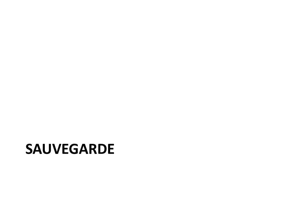 SAUVEGARDE