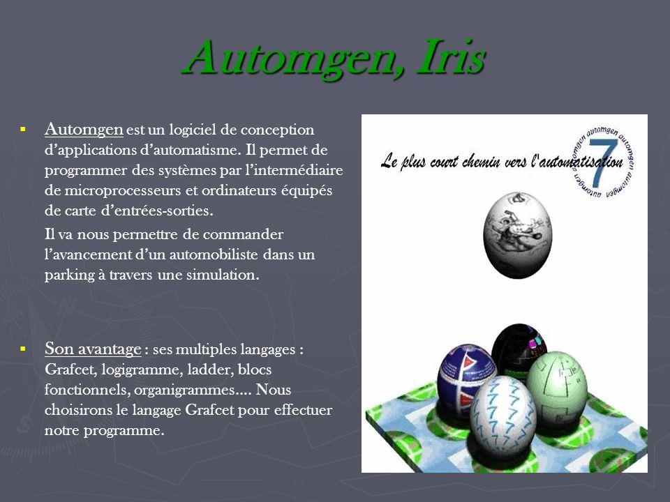 Automgen, Iris