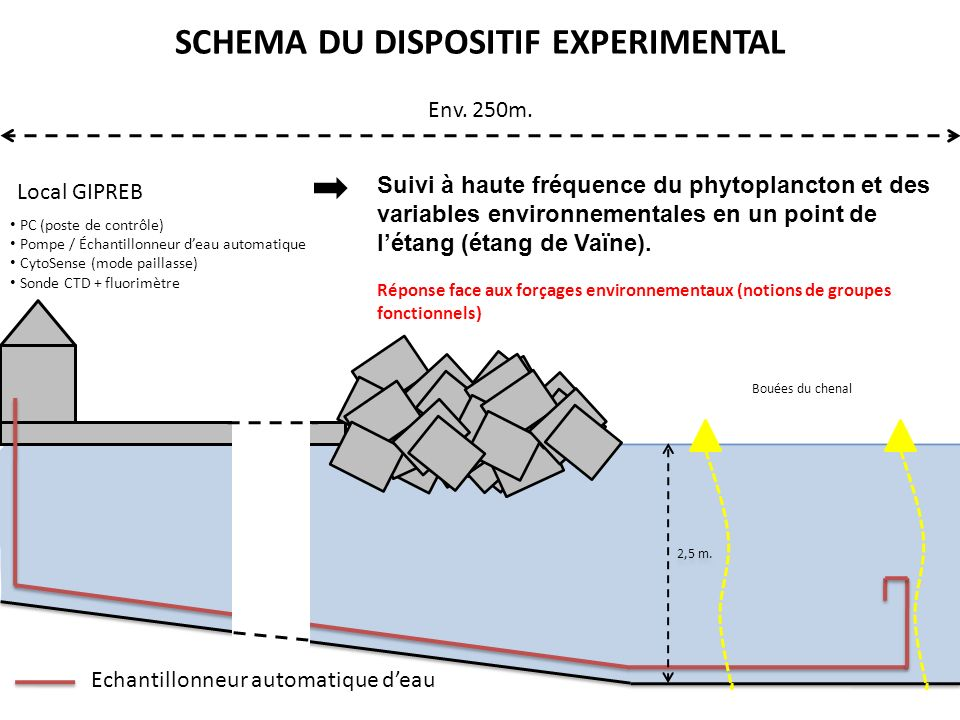 SCHEMA DU DISPOSITIF EXPERIMENTAL