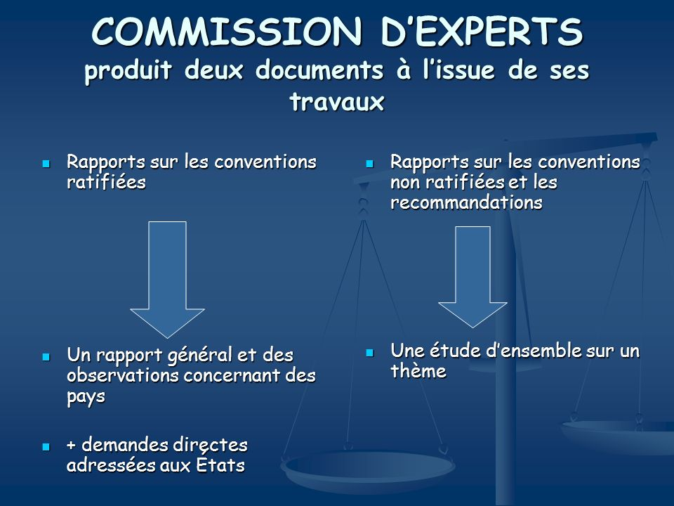COMMISSION D'EXPERTS produit deux documents à l'issue de ses travaux