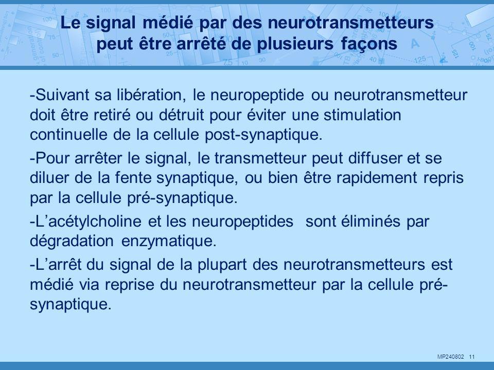 Le signal médié par des neurotransmetteurs peut être arrêté de plusieurs façons