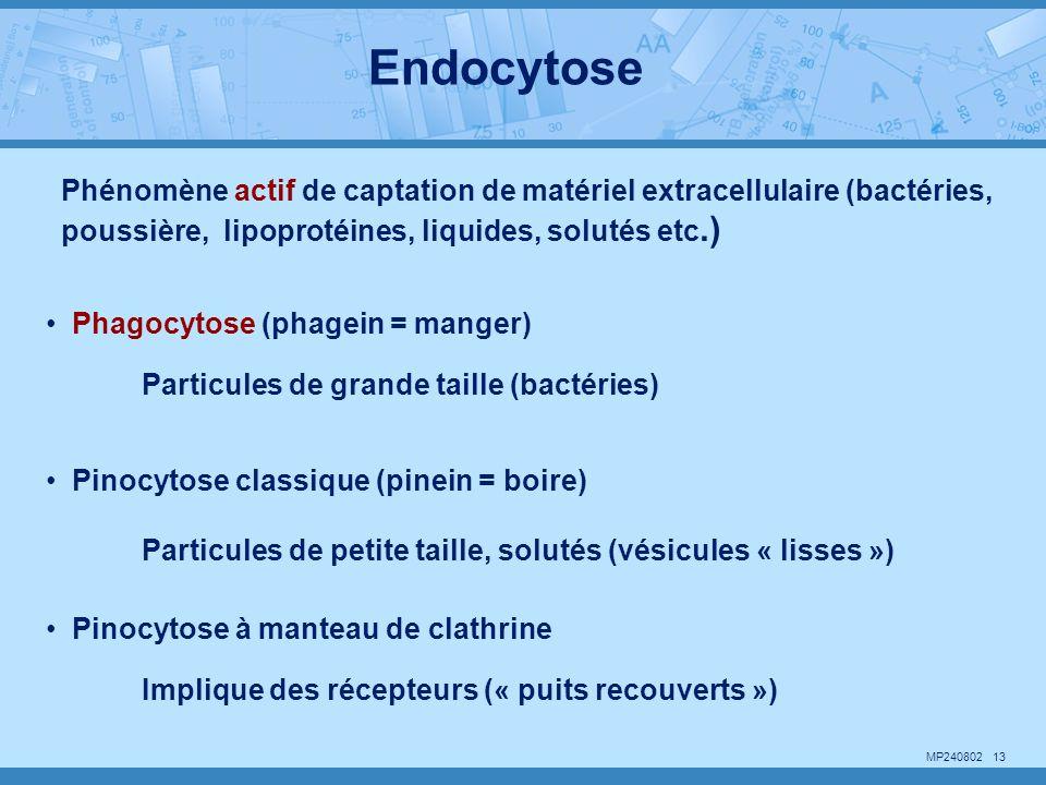 Endocytose Phénomène actif de captation de matériel extracellulaire (bactéries, poussière, lipoprotéines, liquides, solutés etc.)