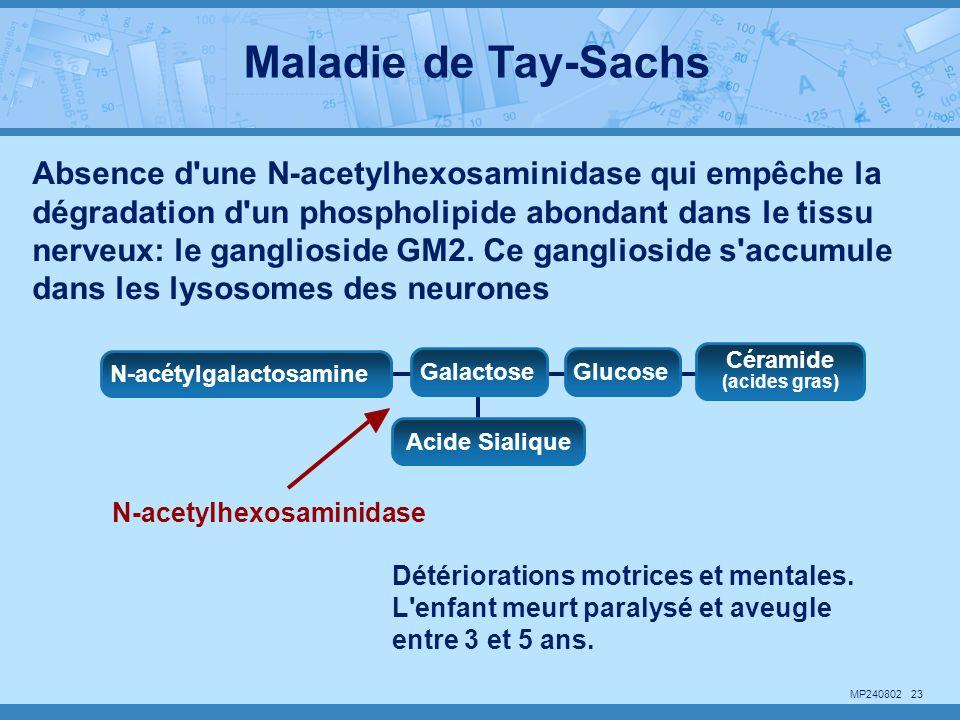 Maladie de Tay-Sachs