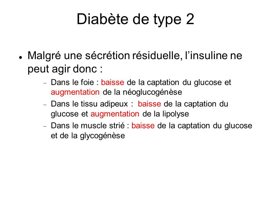 Diabète de type 2 Malgré une sécrétion résiduelle, l'insuline ne peut agir donc :