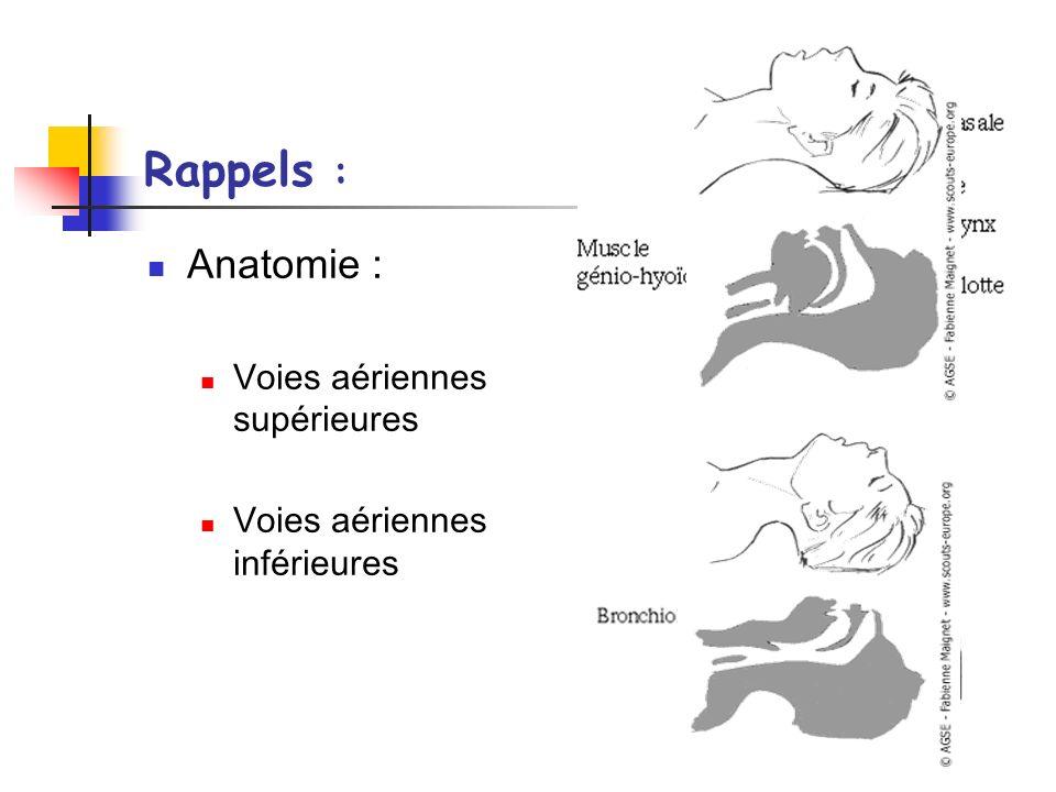 Rappels : Anatomie : Voies aériennes supérieures