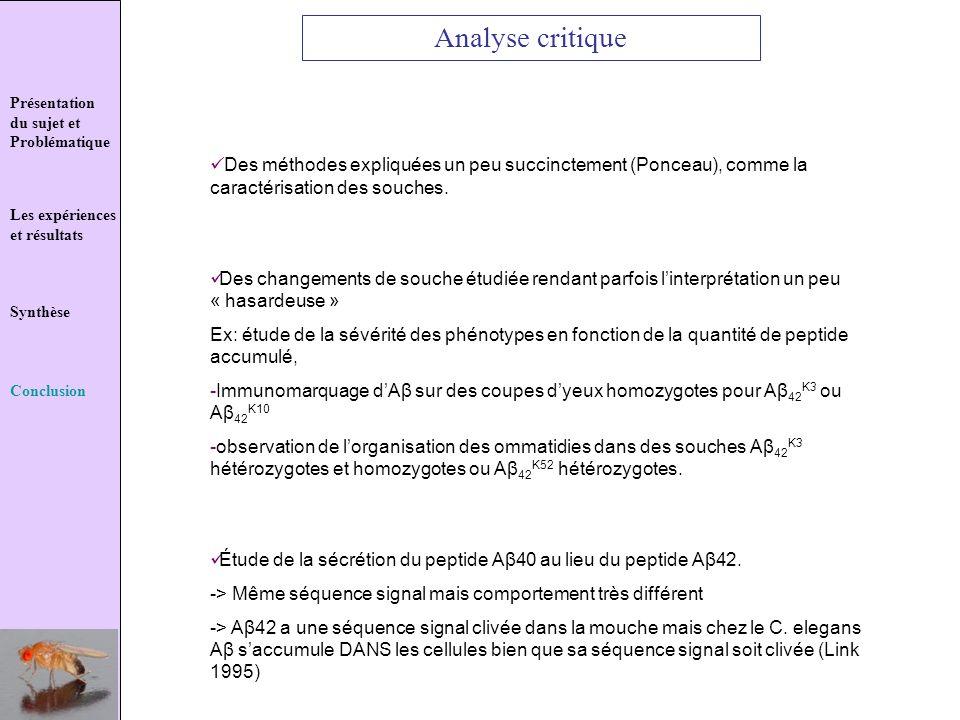 Analyse critique Présentation. du sujet et Problématique.