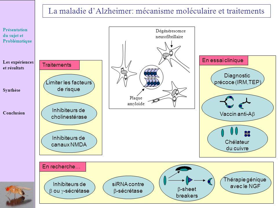 La maladie d'Alzheimer: mécanisme moléculaire et traitements