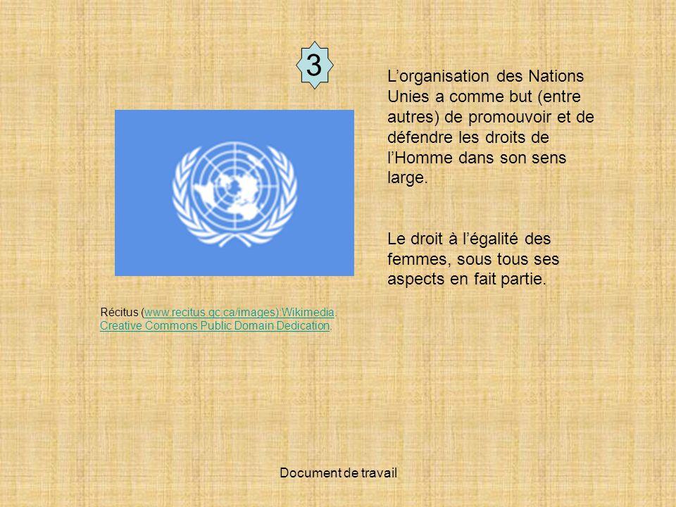 3 L'organisation des Nations Unies a comme but (entre autres) de promouvoir et de défendre les droits de l'Homme dans son sens large.