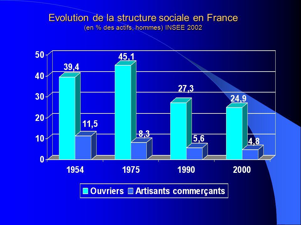 Evolution de la structure sociale en France (en % des actifs, hommes) INSEE 2002